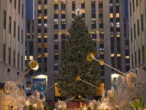 Christmas homeschool study - Rockefeller Center tree