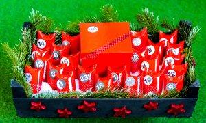 Christmas homeschool study - Advent calendar